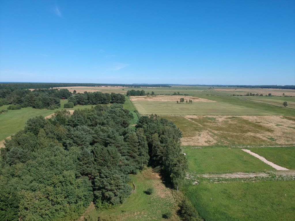 Działka rolna na sprzedaż Dębki  5100m2 Foto 7