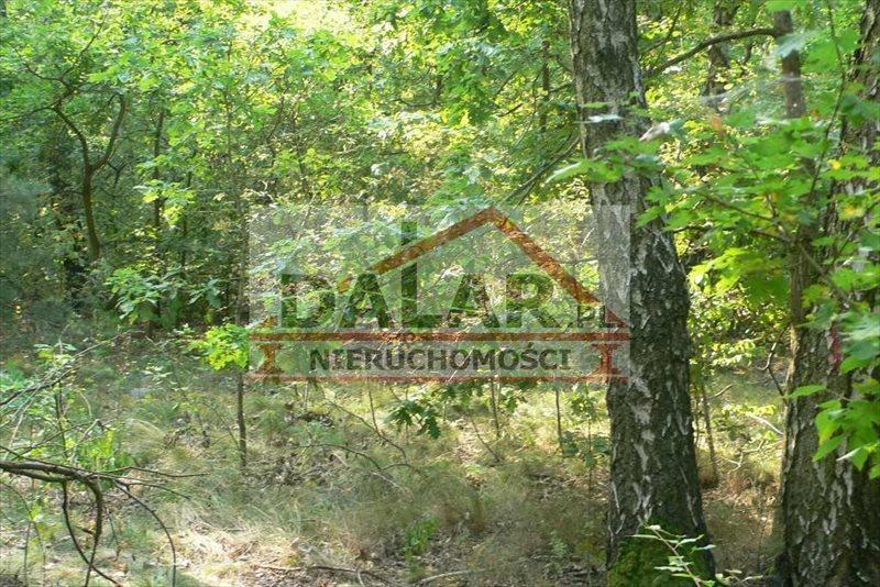 Działka leśna na sprzedaż Lesznowola, Jazgarzewszczyzna  26600m2 Foto 1