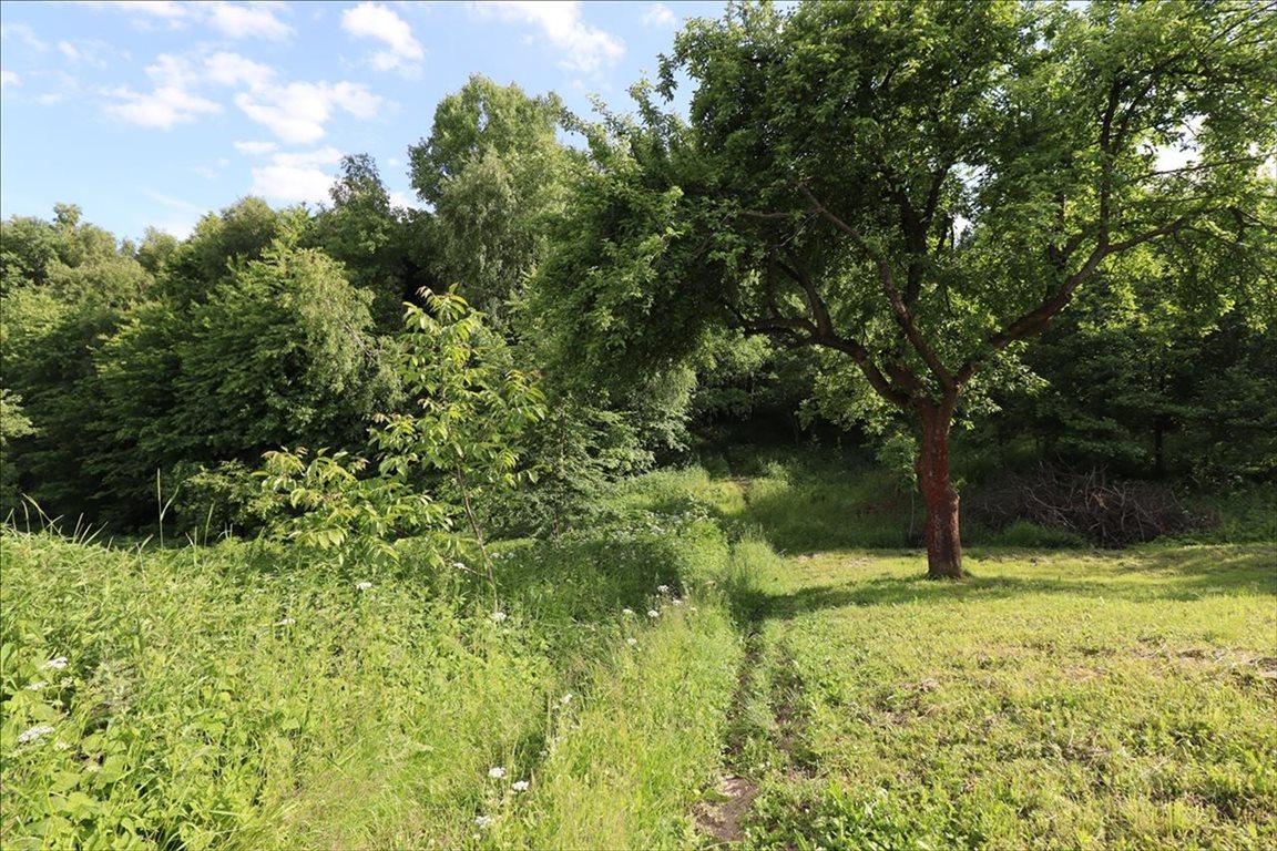 Działka rolna na sprzedaż Wola Zgłobieńska, Boguchwała  7500m2 Foto 2