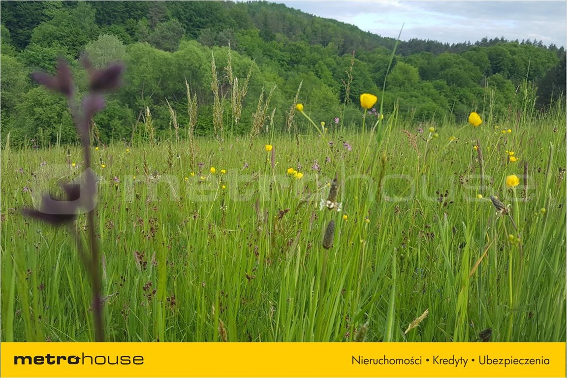 Działka rolna na sprzedaż Średnia Wieś, Lesko  10300m2 Foto 4
