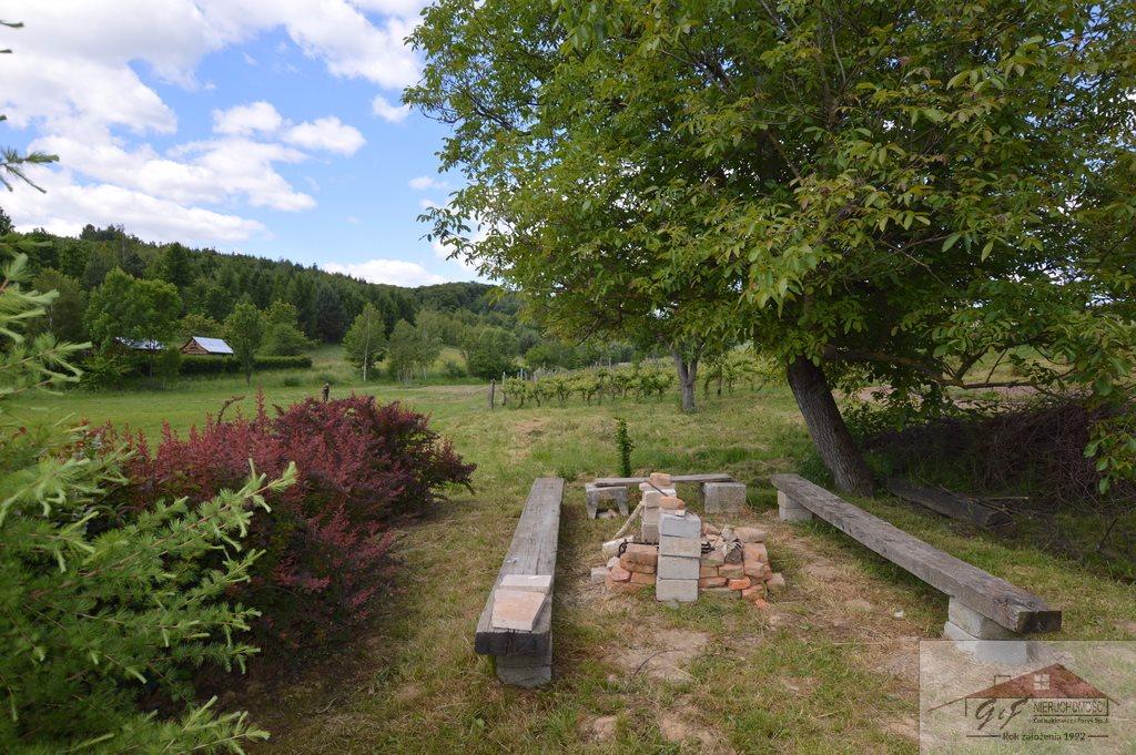 Działka rolna na sprzedaż Węgierka  11700m2 Foto 1