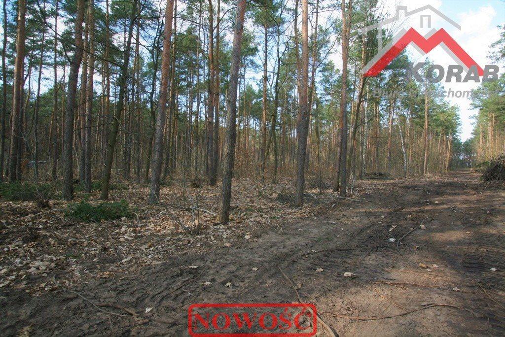 Działka budowlana na sprzedaż Łomianki, Dąbrowa Leśna, Dąbrowa Leśna  2500m2 Foto 3