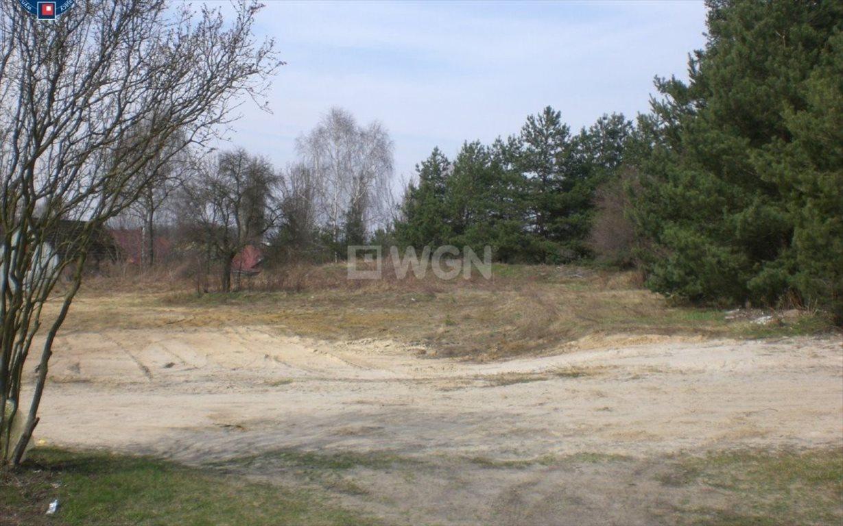 Działka budowlana na sprzedaż Twardogóra, Chełstówek, Chełstówek  3800m2 Foto 2