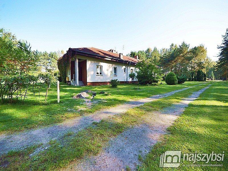 Lokal użytkowy na sprzedaż Trzebież, Wieś  530m2 Foto 11