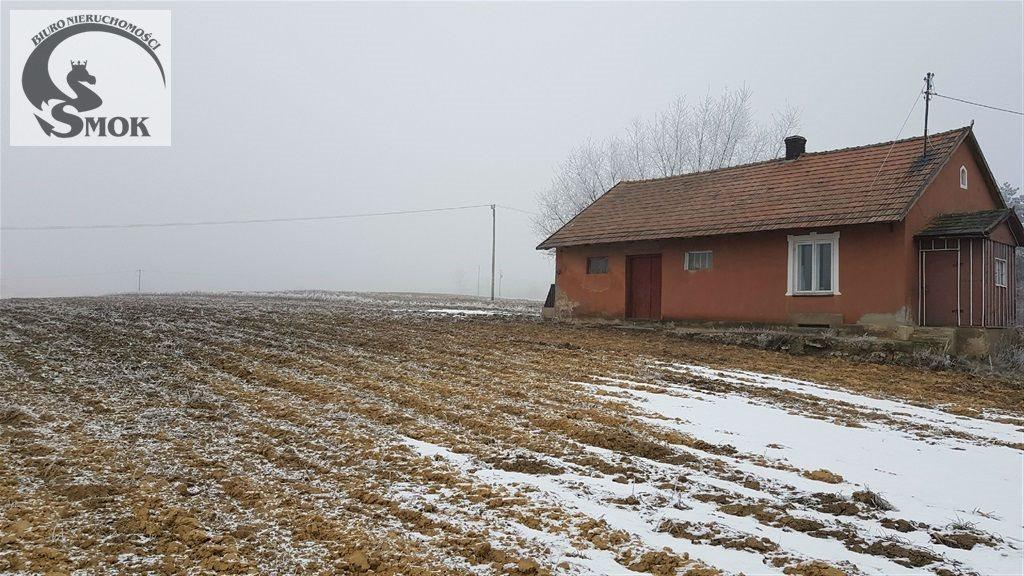 Działka budowlana na sprzedaż Januszowice  10162m2 Foto 1