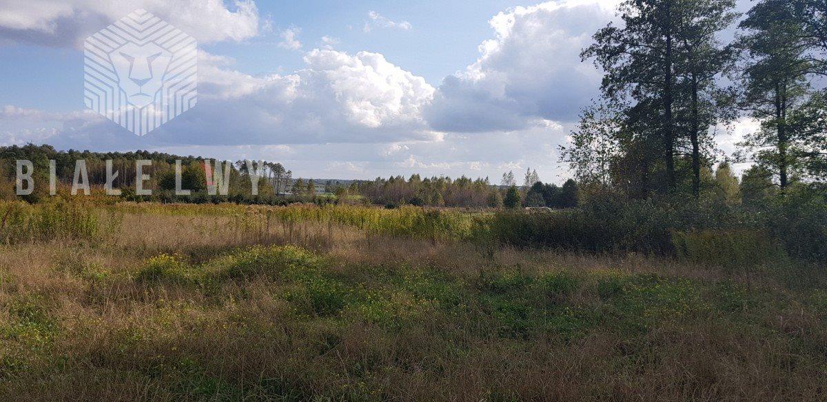 Działka rolna na sprzedaż Sułkowice  102100m2 Foto 4