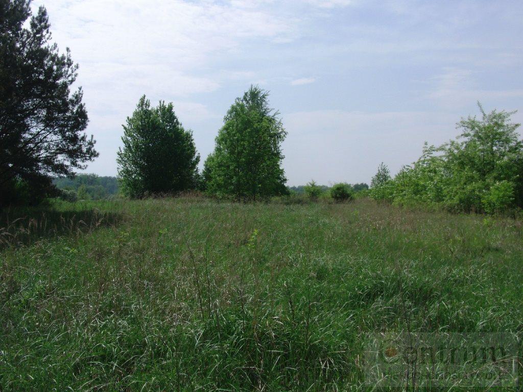Działka rolna na sprzedaż Opole, Żerkowice  3180m2 Foto 3