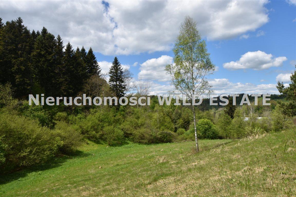 Działka rolna na sprzedaż Olszanica  17148m2 Foto 8