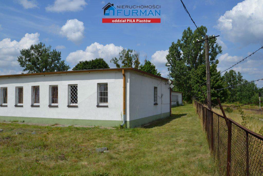 Lokal użytkowy na sprzedaż Piła, Staszyce  3210m2 Foto 12