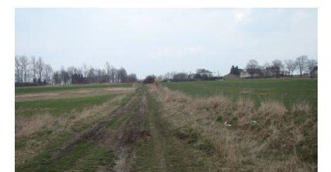 Działka leśna na sprzedaż Myszków, Będusz, Żelisławickiej  3125m2 Foto 1