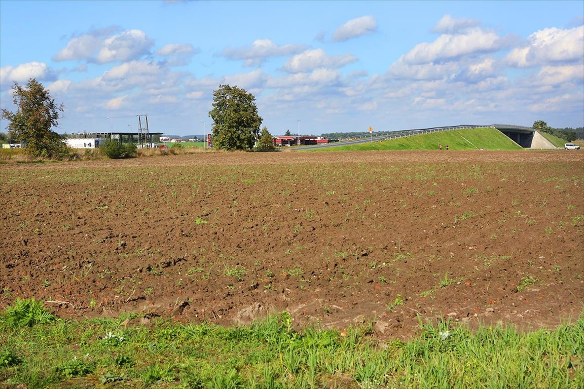 Działka budowlana na sprzedaż Zakroczym, Zakroczym  5268m2 Foto 10