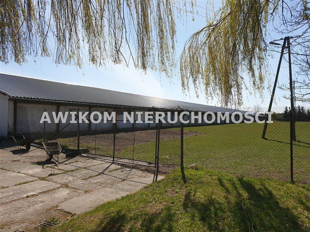 Lokal użytkowy na sprzedaż Teresin  6975m2 Foto 3