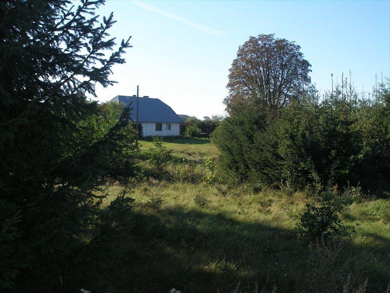 Dom na sprzedaż Płoty  100m2 Foto 1