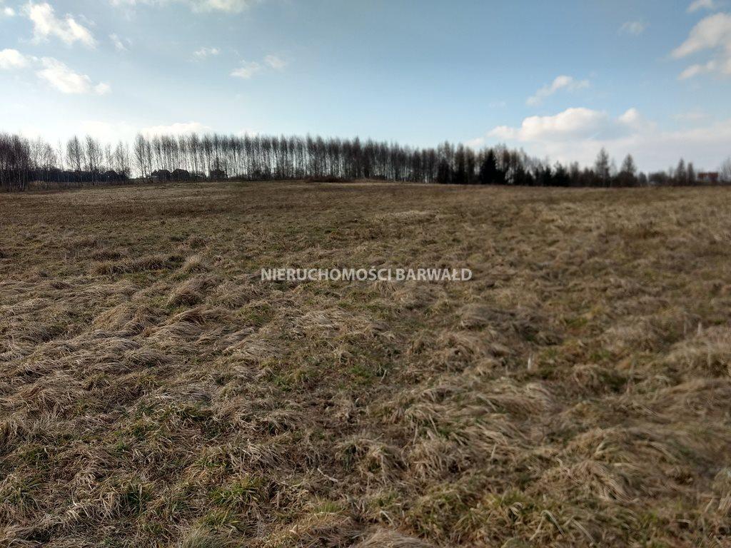 Działka rolna na sprzedaż Podolany  3177m2 Foto 4