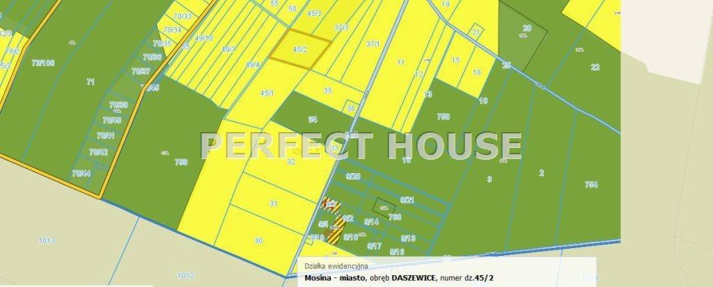Działka rolna na sprzedaż Daszewice  9900m2 Foto 4
