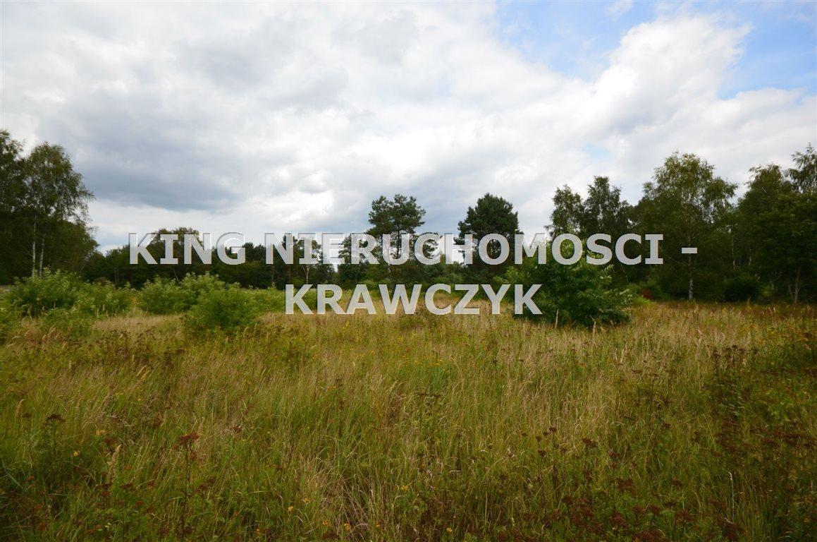 Działka inna na sprzedaż Szczecin, Wielgowo  1669m2 Foto 1