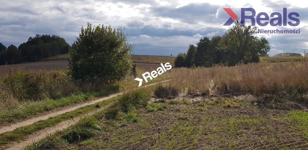 Działka rolna na sprzedaż Dąbrówka Polska  451200m2 Foto 6