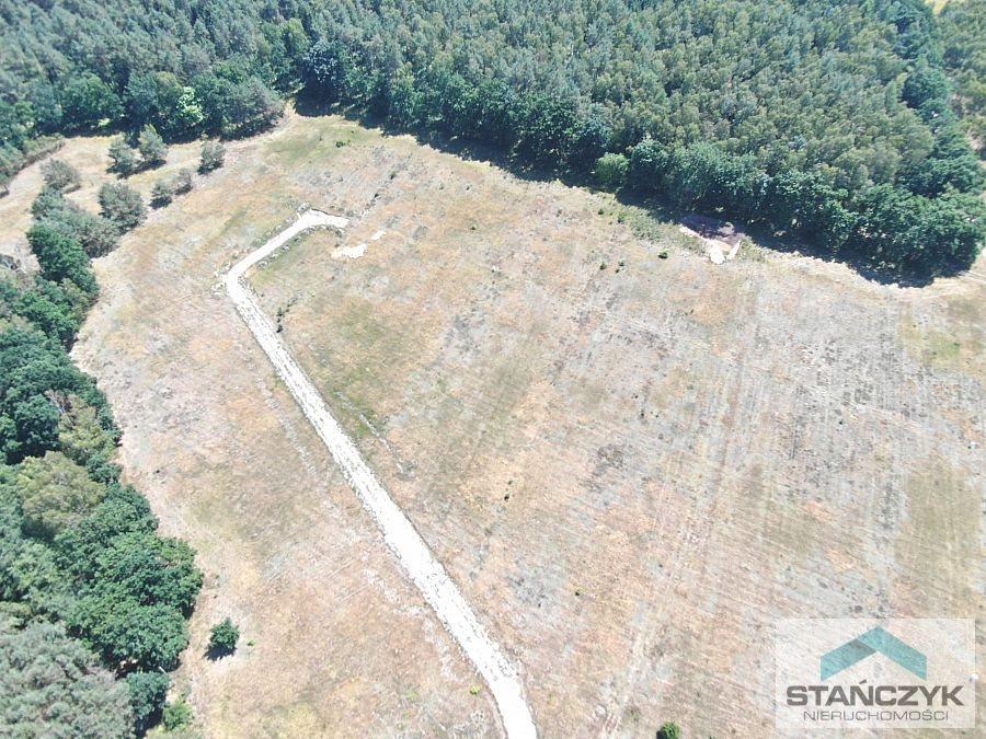 Działka budowlana na sprzedaż Stepnica, lasy, łąki, zalew  1000m2 Foto 5