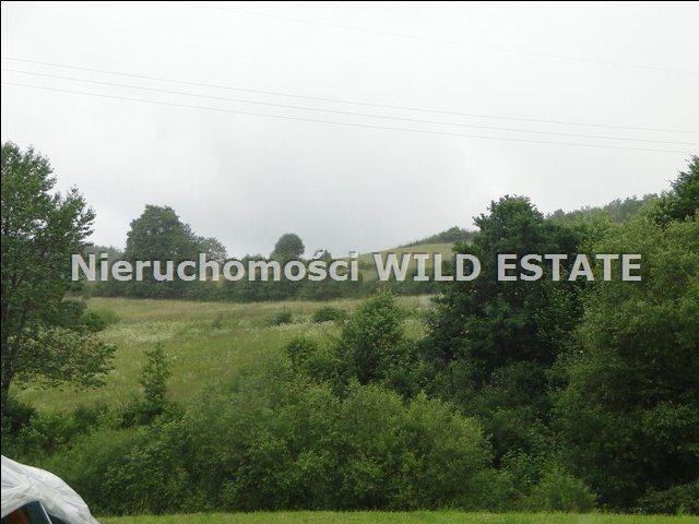 Działka rolna na sprzedaż Solina, Rybne  5000m2 Foto 1