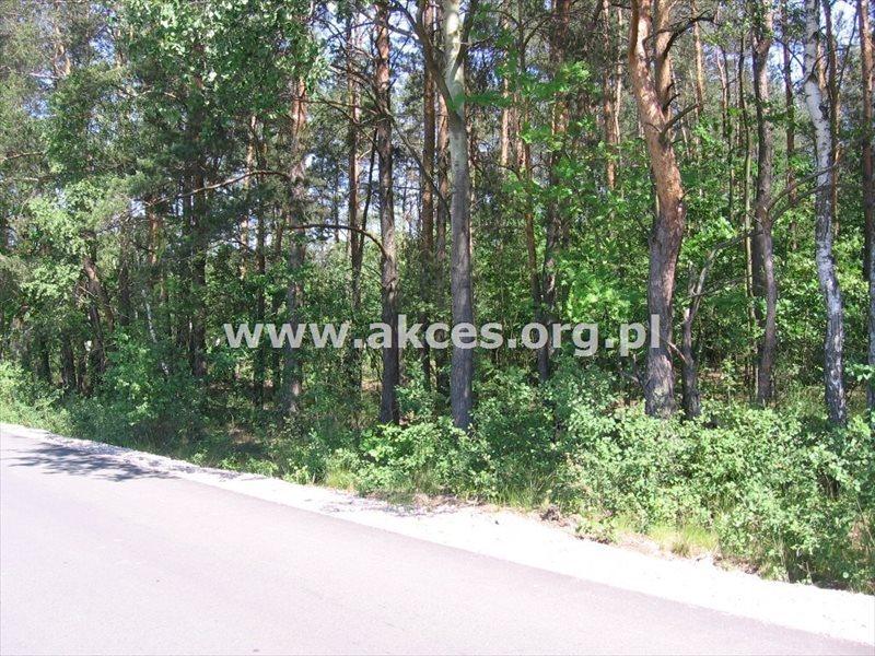 Działka budowlana na sprzedaż Budy-Grzybek  8500m2 Foto 3