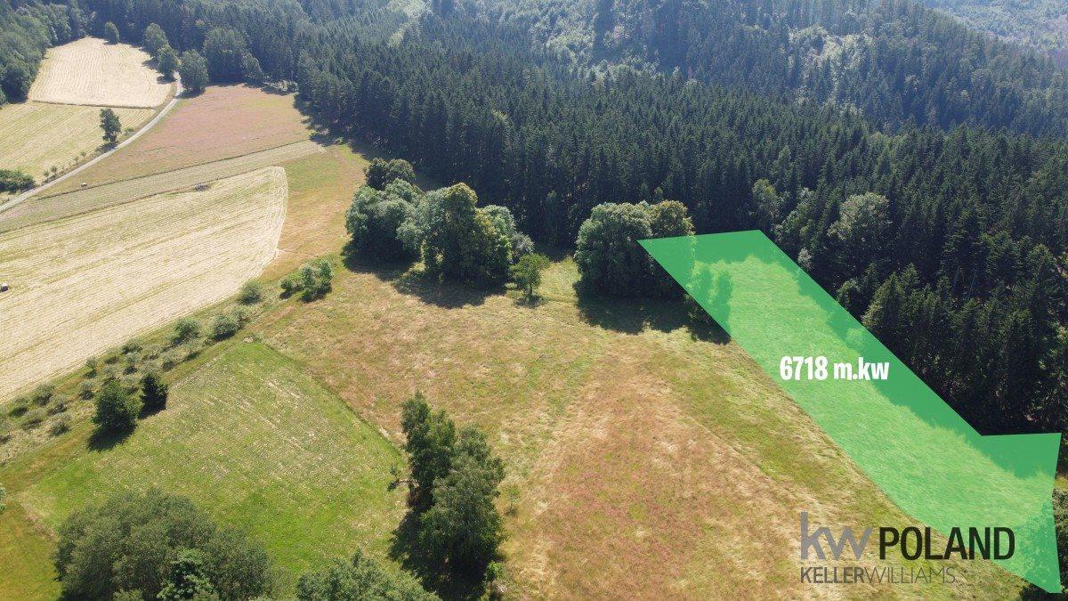 Działka rolna na sprzedaż Kudowa-Zdrój, Pstrążna  6416m2 Foto 1
