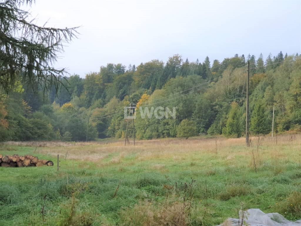 Działka rekreacyjna na sprzedaż Wisła, Jawornik  19000m2 Foto 7