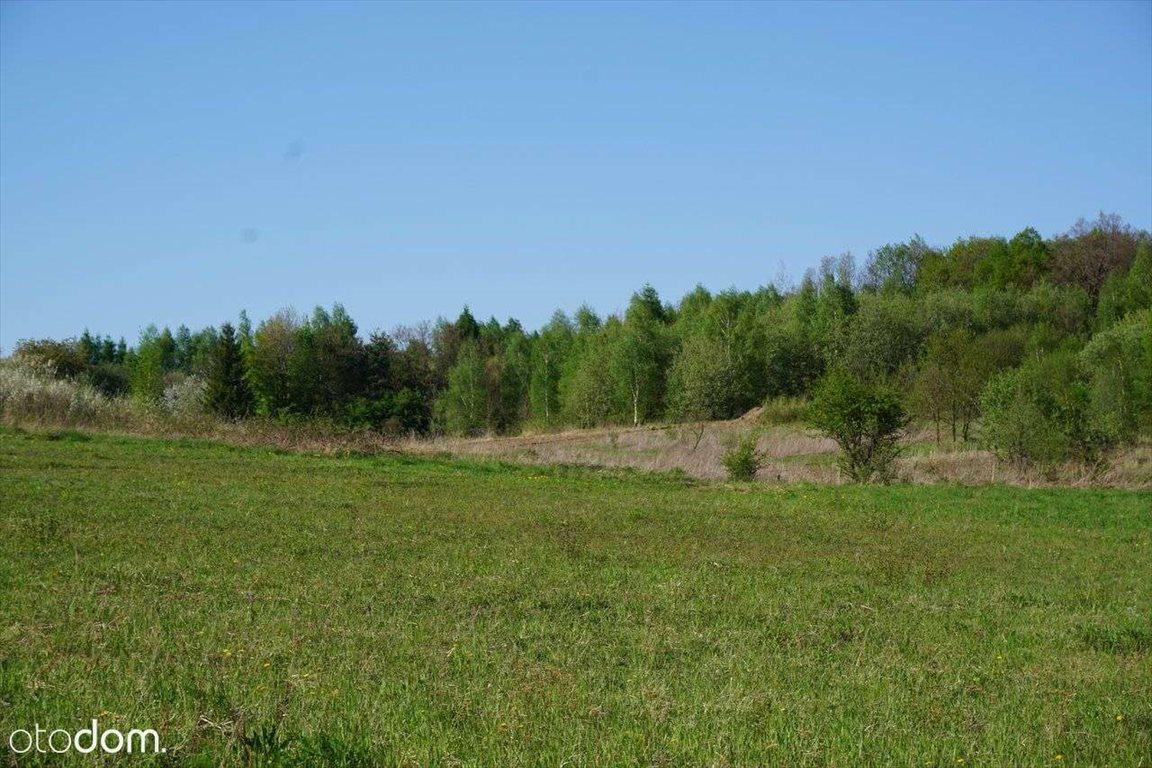 Działka rolna na sprzedaż Wierzchowie, ul. Graniczna  7680m2 Foto 1