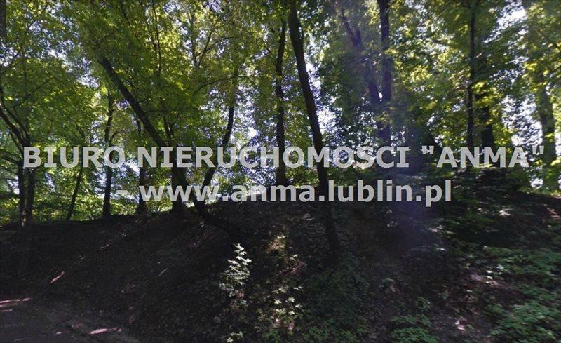 Działka inwestycyjna na sprzedaż Lublin, Węglin, Węglinek, Węglinek  5473m2 Foto 2