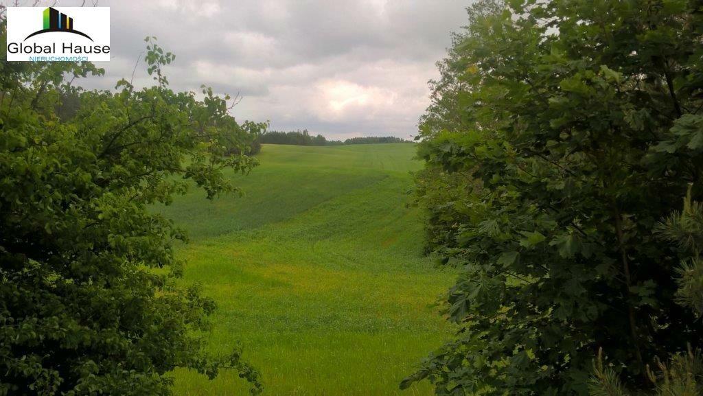 Działka rolna na sprzedaż Nowe Krzywe  3080m2 Foto 5