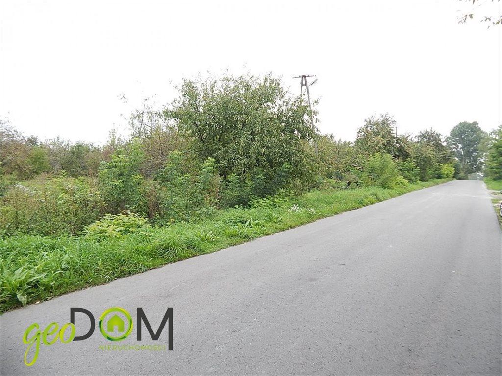 Działka rolna na sprzedaż Horodyszcze-Kolonia  11293m2 Foto 1