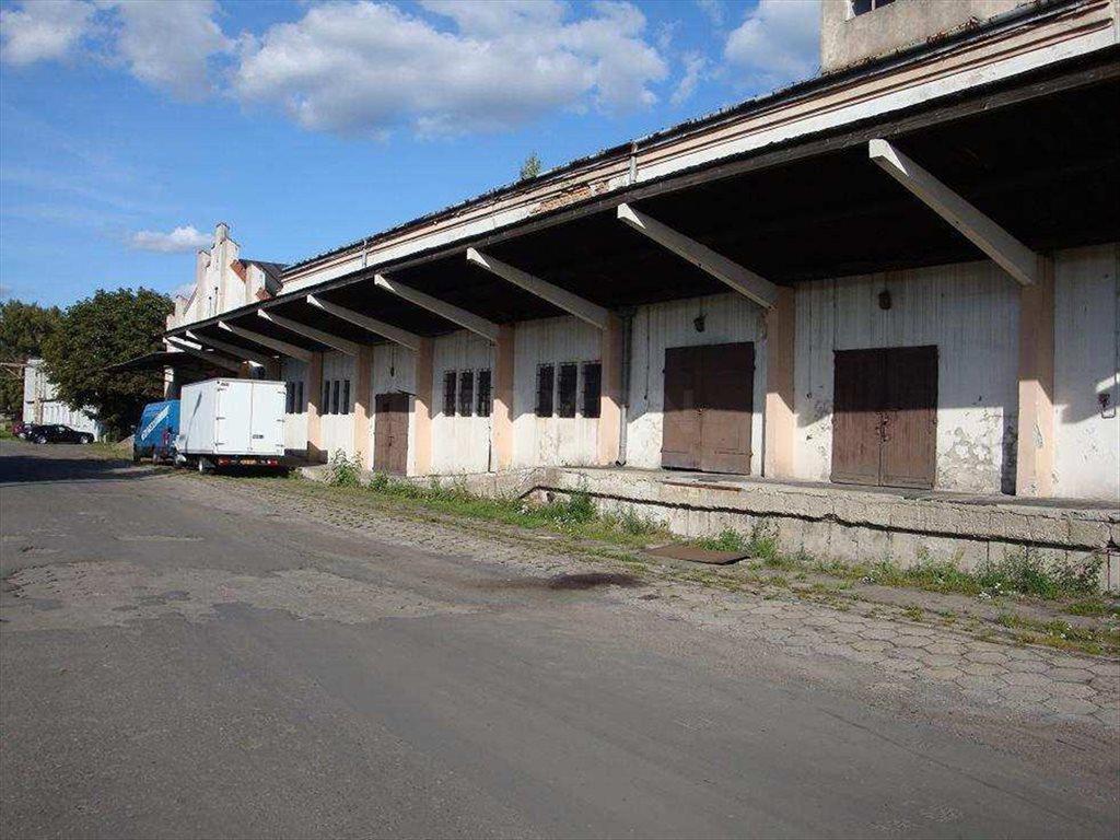 Lokal użytkowy na wynajem Konstancin-Jeziorna, Bielawska  1000m2 Foto 2