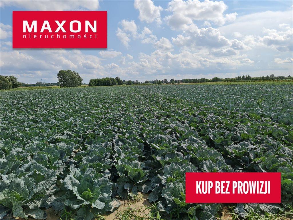 Działka rolna na sprzedaż Piorunów  3089m2 Foto 1