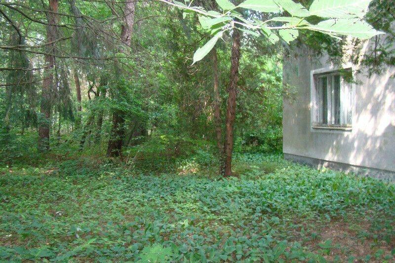 Działka budowlana na sprzedaż Magdalenka  2979m2 Foto 4