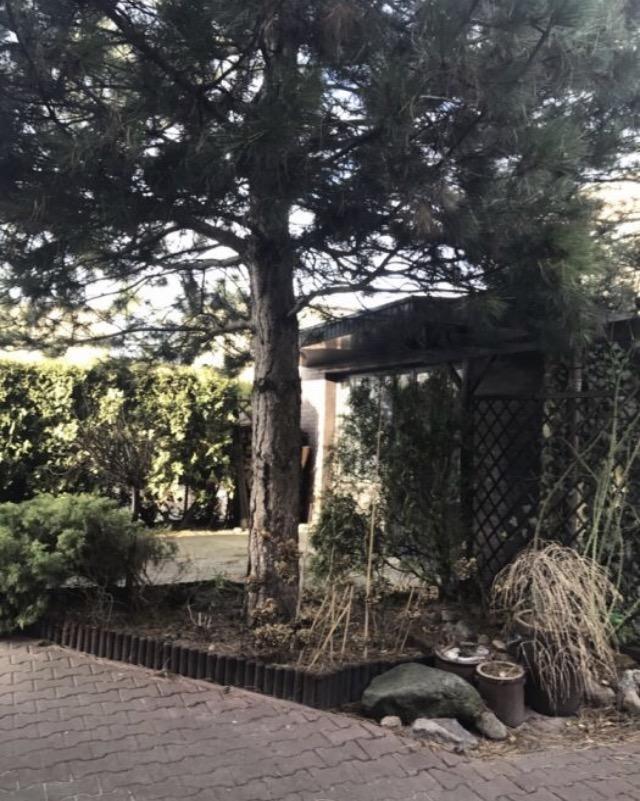 Dom na wynajem Luboń, Chopina  200m2 Foto 1