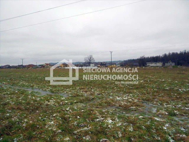 Działka rolna na sprzedaż Bożepole Wielkie  17800m2 Foto 2