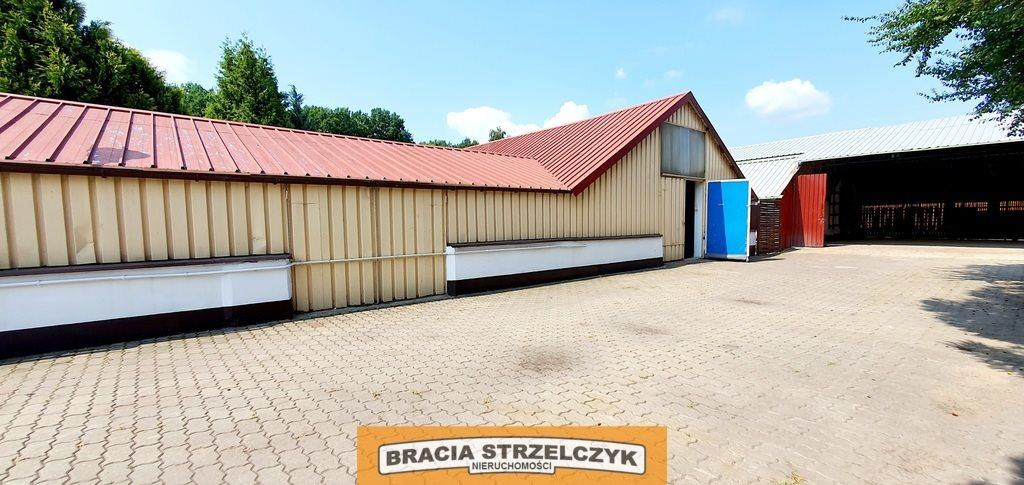 Lokal użytkowy na wynajem Jabłonna, Modlińska  700m2 Foto 9