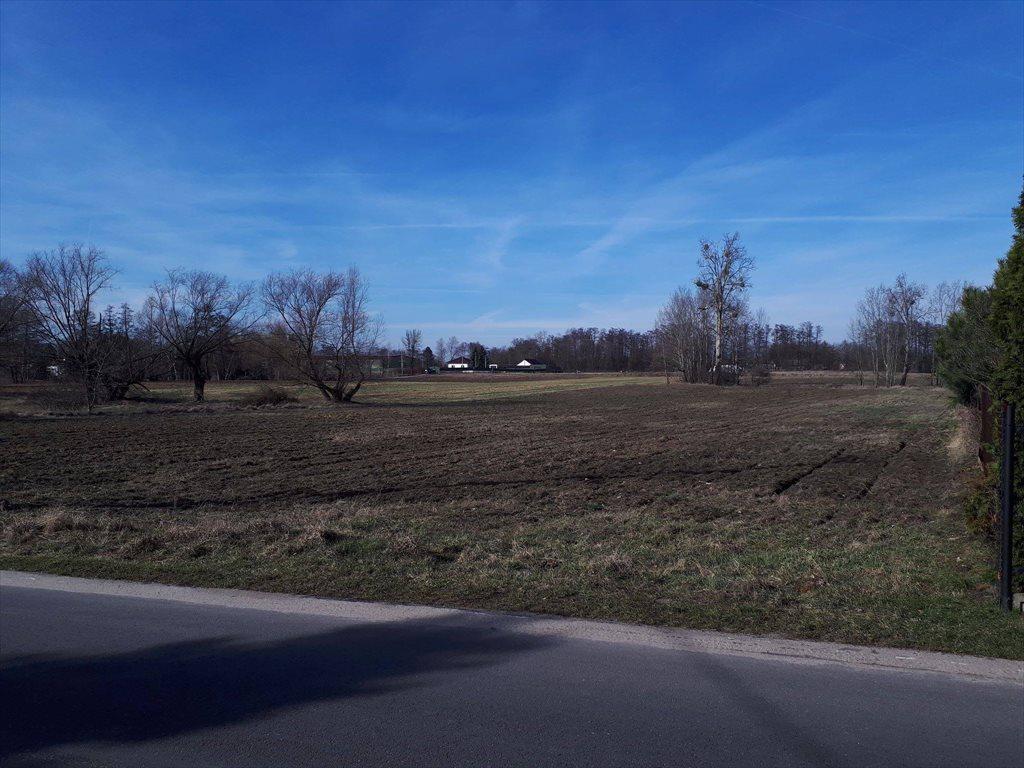 Działka rolna na sprzedaż Konstancin-Jeziorna, Obórki  10000m2 Foto 4