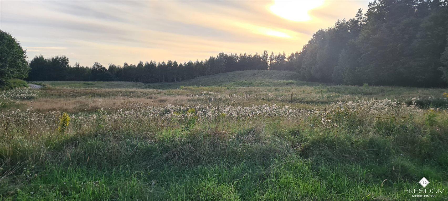 Działka rolna na sprzedaż Cerkiewnik  8467m2 Foto 2
