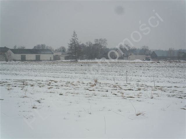 Działka rolna na sprzedaż Retków  10000m2 Foto 2