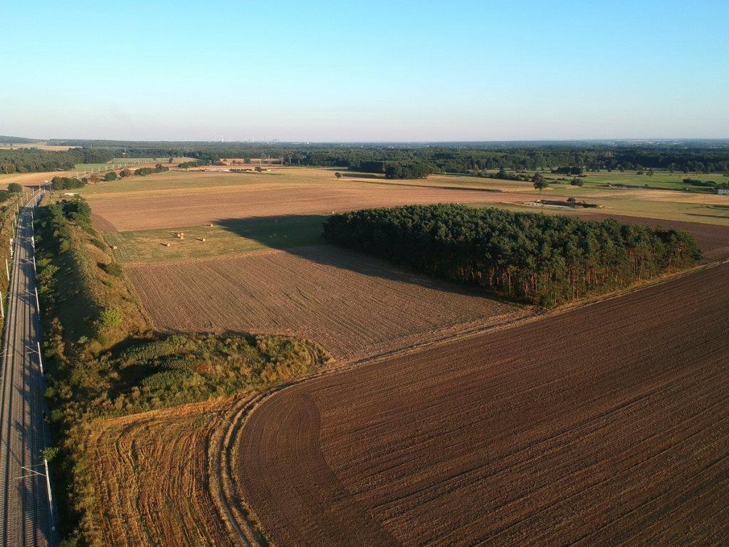 Działka leśna na sprzedaż Gogolin, Wygoda  25540m2 Foto 6