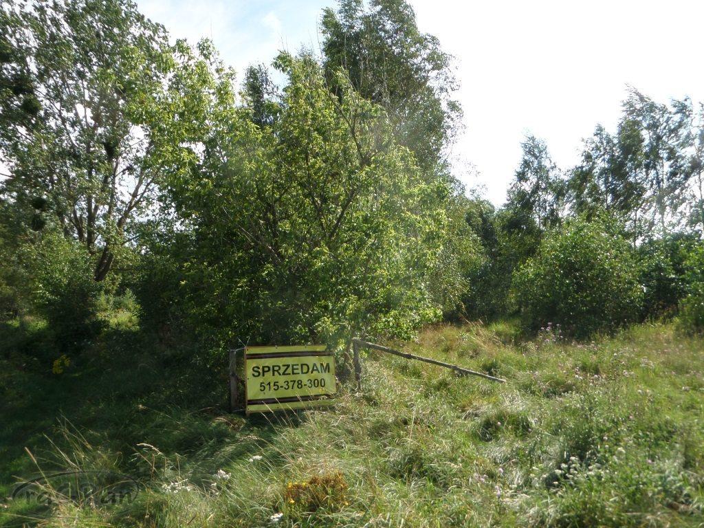 Działka budowlana na sprzedaż Łosia Wólka, Brzozowa  1000m2 Foto 6
