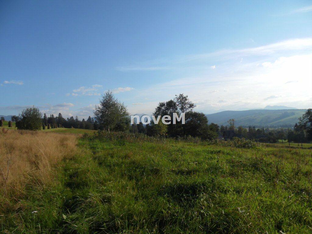 Działka rolna na sprzedaż Dzianisz  2508m2 Foto 3