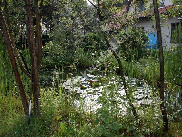 Dom na sprzedaż Żyrardów  294m2 Foto 2