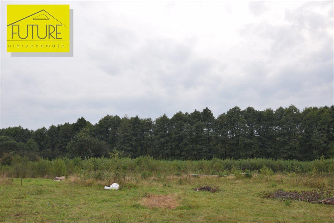 Działka rolna na sprzedaż Liksajny  1189m2 Foto 6