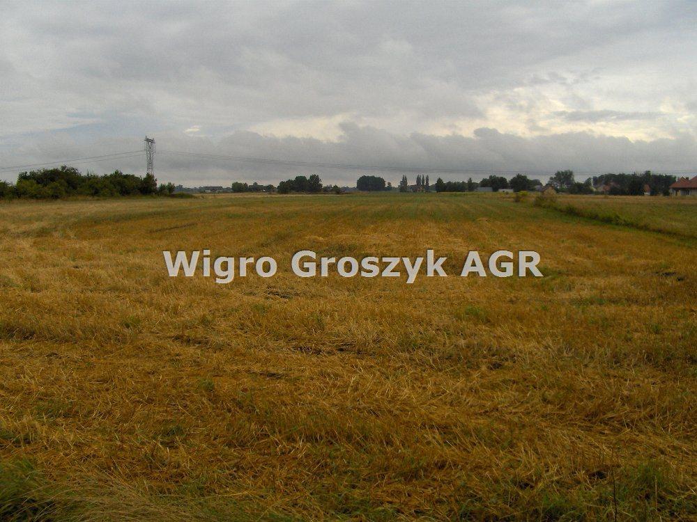 Działka rolna na sprzedaż Kampinos A  10200m2 Foto 1