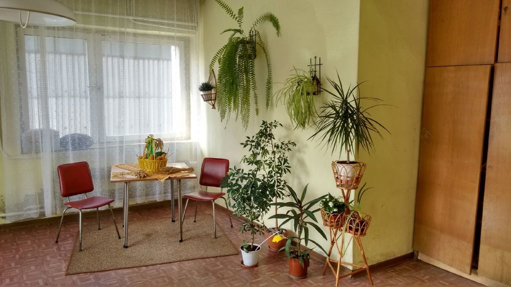 Lokal użytkowy na sprzedaż Kędzierzyn-Koźle  37500m2 Foto 4