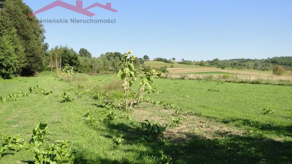 Działka rolna na sprzedaż Brzozów  1000m2 Foto 2
