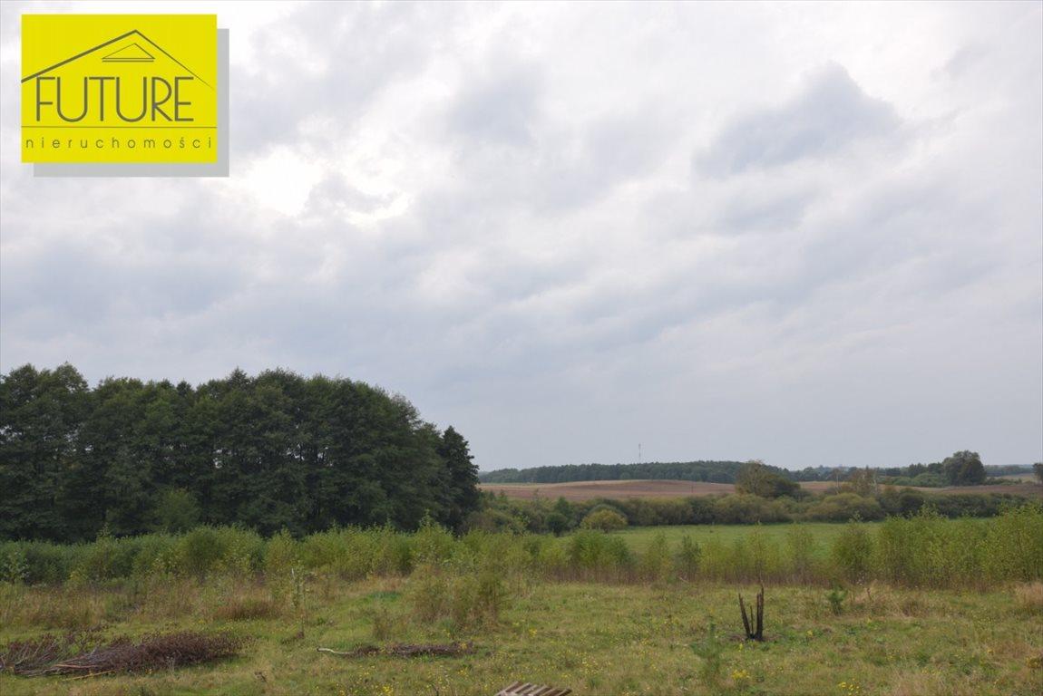 Działka rolna na sprzedaż Liksajny  1162m2 Foto 7