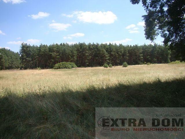 Działka inna na sprzedaż Komarowo  1154m2 Foto 4