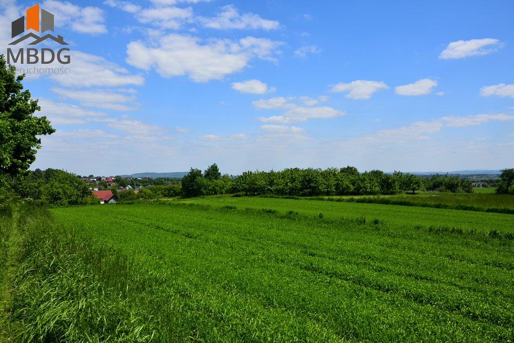 Działka rolna na sprzedaż Czułów  16800m2 Foto 3
